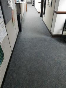 Carpeted Floors