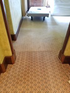 wool carpet cleaned Madison WI